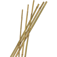 Bamboestok naturel H120cm dia. 10-12mm set a 5 stuks