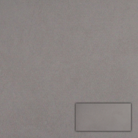 Vloertegel Traffic Grey 30,0X60,0 cm (per m2)