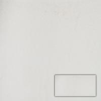 Vloertegel Buxy Pearl 30,0X60,0 cm (per m2)