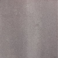 Decor terrastegel Brooklyn Light Brass beton 60x 60x4,7 cm