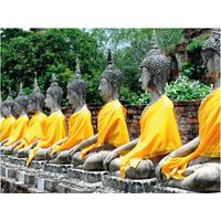 PB-Collection tuinschilderij Boeddha Line 40x30cm