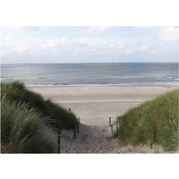 PB-Collection tuinschilderij Dune Path to Sea 40x30cm