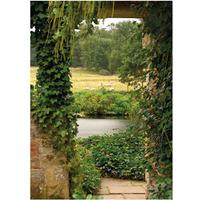 PB-Collection tuinschilderij Garden View Ivy 40x30cm