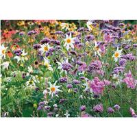 PB-Collection tuinschilderij Wild Flowers Purple 40x30cm