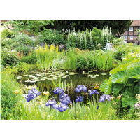 PB-Collection tuinschilderij Pond Green 40x30cm