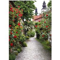 Tuinschilderij Alley roses 50x70cm PB-Collection