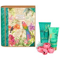 Rainforest Explorers Journal Gift Set