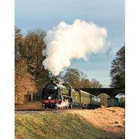 Steam Train Trip & Botanic Garden Visit