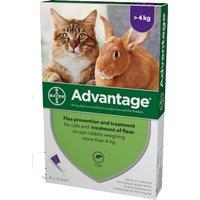 Advantage Flea Control 80 Large Cats & Rabbits > 4kg (4 pipettes) NFA-CS