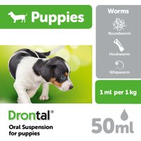 Drontal Puppy Worming Oral Suspension 50ml NFA-D