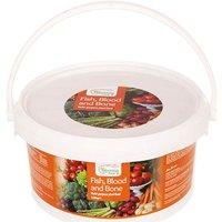 Blooming Fast Fish Blood & Bone Organic Fertiliser1.5kg Tub