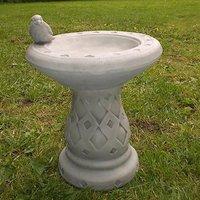 Small Wren Birdbath