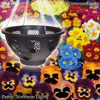 Easy Fill Baskets Autumn Bundle Deal
