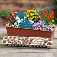 Plant-o-Mat Balcony Beauty Bulb Planter Kit includes 38 Mixed Bulbs