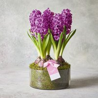 Mother's Day Tulips Heart Planter Pink