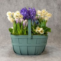 Large British Spring Garden Planter Pastel