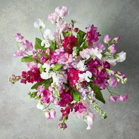 Scented British Sweet Peas & Stocks Bouquet Pink