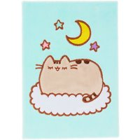 Sleepy Pusheen Mint Fluffy Notebook - Fluffy Gifts