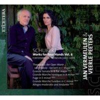 Franz Schubert - Schubert: Works for Four Hands - Volume 6