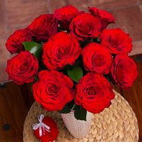 12 Red Roses - Flowers Gifts