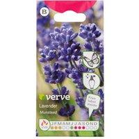 Munstead Lavender Seed