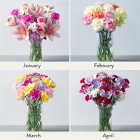 Flowers for a Year