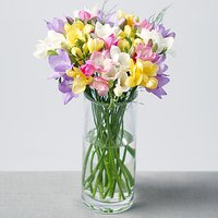 Fragrant Freesias - Flowers Gifts
