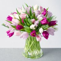Spring Tulips XL - Bunches Gifts