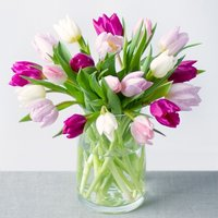 Spring Tulips - Bunches Gifts