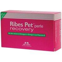 Nbn Lanes Ribes Pet Recovery Integratore Dermatite Cani E Gatti 60 Perle