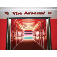 Family Tour Of Emirates Stadium Picture