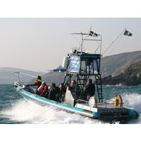 Sea Safari for Two - Sea Gifts