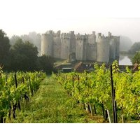 Deluxe Vineyard Tour And Tasting For Two Picture