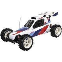 FG Modellsport Marder 1:6 RC Modellauto Benzin Buggy Heckantrieb (2WD) RtR 2,4 GHz