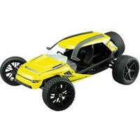 Amewi Hammerhead Brushless 1:6 RC Modellauto Elektro Monstertruck Heckantrieb (2WD) RtR 2,4 GHz