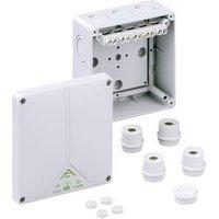 Boîte de raccordement Spelsberg 81041001 (L x l x h) 140 x 140 x 79 mm gris IP65 1 pc(s)