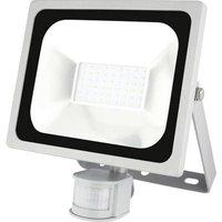 Emos Profi 850EMPR30WZS2730 LED outdoor floodlight (+ motion detector) 30 W Cool white