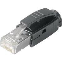 Telegärtner STX RJ45-Stecker Stecker, gerade Pole: 8P8C J80026A0001 Glasklar J80026A0001 1St.
