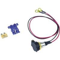 BAAS DIN-Bordsteckdose SD14 Belastbarkeit Strom max.=5A Passend für (Details) Normstecker, Universa