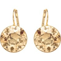 Bella Pierced Earrings, Brown, Gold-tone Plated
