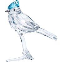 Blue Jay - Swarovski Crystal Gifts