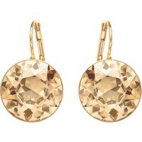 Bella Pierced Earrings, Brown, Gold-tone Plated