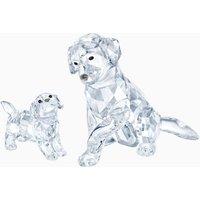 Labrador Family Online Set - Labrador Gifts
