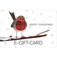 M&S Christmas Robin E-Gift Card - 125