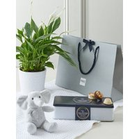 M&S A Bundle of Joy New Baby Peace Lily Gift