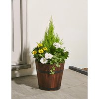 Extra Large Summer Flower Planter