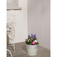 Summer Flowering Barrel