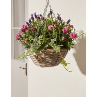 Bee Friendly Hanging Basket Plant