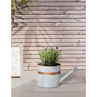 Lavender Watering Can Planter