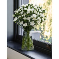 The Collection Pink Avalanche Rose Bouquet